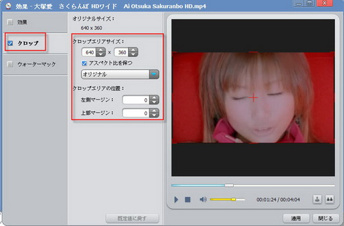 mpeg dvd 変換